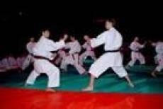 В Саранске пройдет  Международный фестиваль боевых искусств