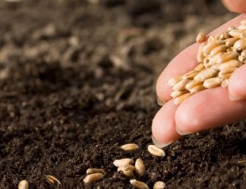 В Мордовии — почти 100 % готовность сельхозтехники к весенне-полевым работам