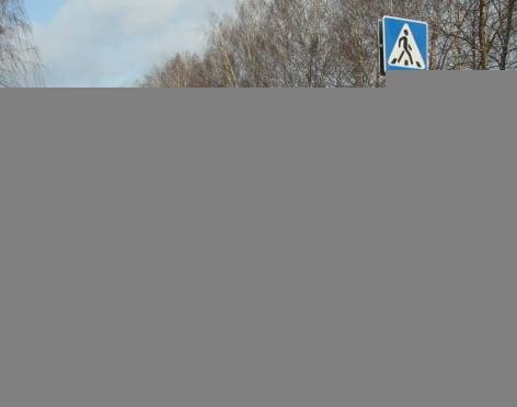 В Мордовии кадеты вразумляли водителей и пешеходов
