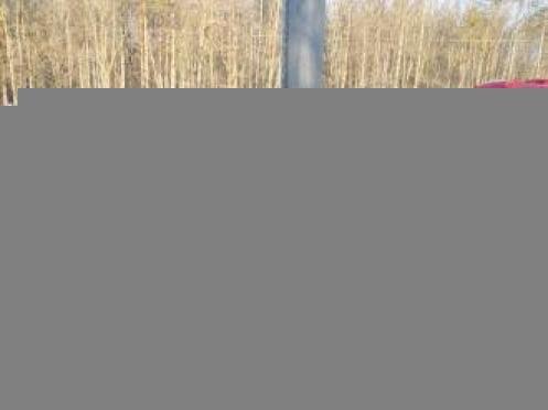 В Саранске водитель погиб при ударе авто о фонарный столб