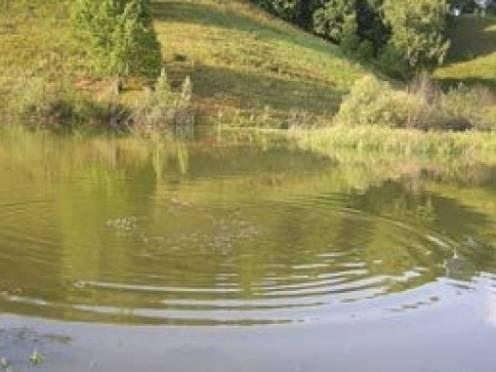 В Мордовии расследуют гибель утонувшего сироты