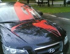 Ссора поколений: житель Торбеевского района облил битумным лаком авто оппонента