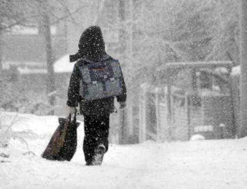 В нескольких районах Мордовии мороз «не пустил» младших школьников на уроки