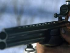 В Мордовии охотник вместо зайца застрелил кабана