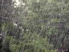 Грозовой ливень с градом и сильным ветром обещают в Мордовии