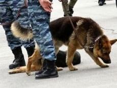 В центре Саранска искали взрывное устройство