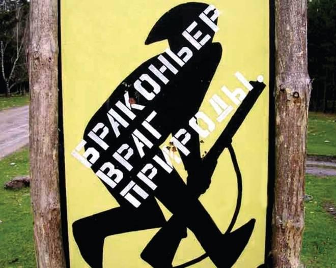 В Мордовии браконьеров наказали за пару убитых бобров