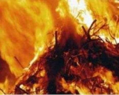 В сельхозпредприятии Мордовии подожгли 165 тонн сена