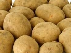 В Мордовии проблемы с ценами на картофель и мясо