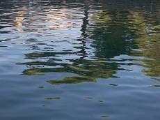 В Мордовии молодой мужчина утонул, отдыхая с семьёй