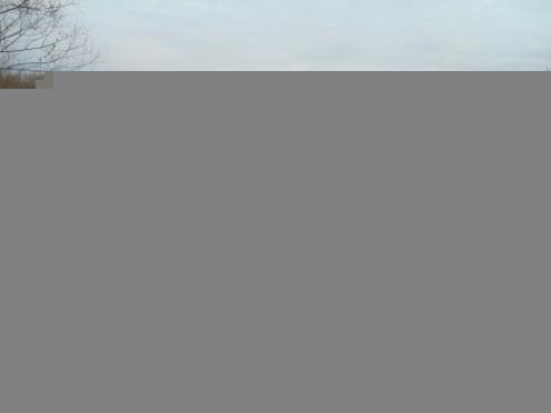 В Мордовии под воду ушел автомобильный мост