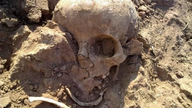 В подвале дома житель Мордовии нашел скелет родного брата