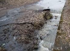 В Мордовии сельхозпредприятие травило навозом рыбу
