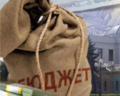 Депутаты Мордовии «подрезали» бюджет