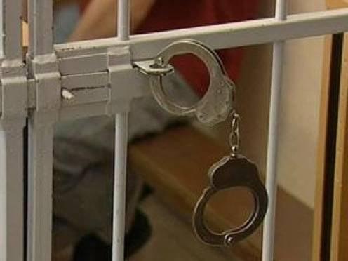 МВД Мордовии: с организованной преступностью в регионе практически покончено
