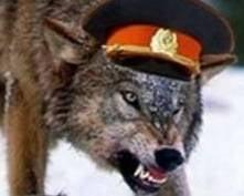 В Саранске мошенник в погонах отделался штрафом