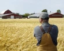 Пензенские фермеры приедут в Мордовию за опытом