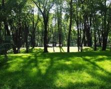 Новый парк в Саранске открыл лично Глава Мордовии