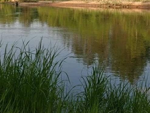Жители Мордовии больше не встретят бетонных преград на пути к озеру Инерка