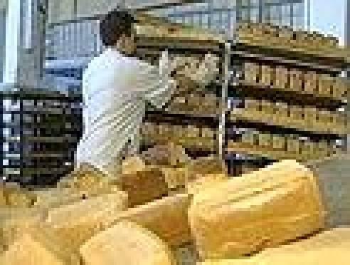 В Саранске обсудили вопросы обеспечения республики хлебом социальных сортов