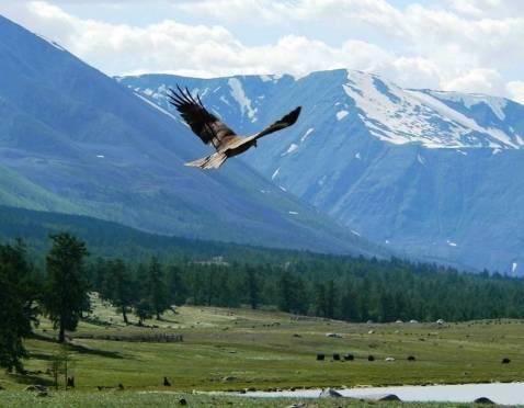 Для поездки в Монголию виза больше не нужна