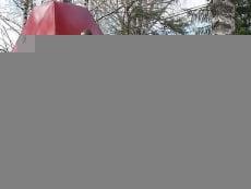 В Мордовии студенты принялись ремонтировать памятники