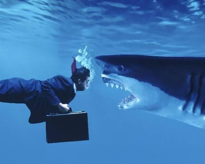 В Саранске молодых предпринимателей будут готовить на опыте бизнес-акул