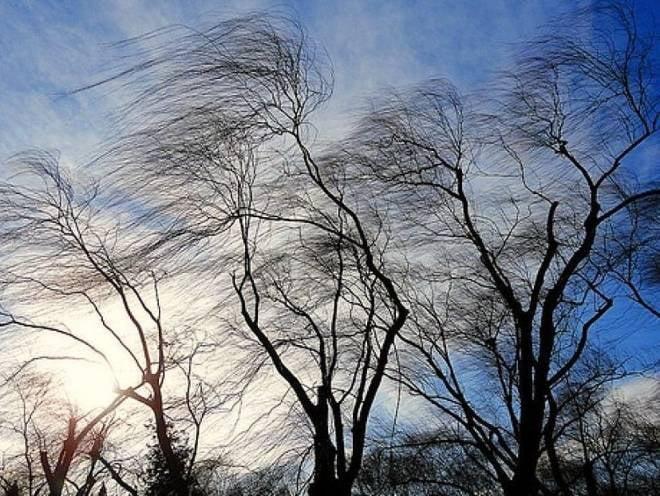 В среду в Мордовии будет ветрено