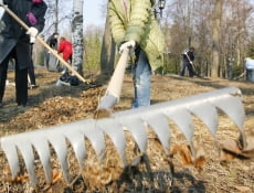 50 тысяч горожан вышли на генеральную уборку Саранска