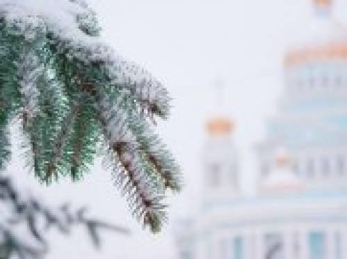 В Саранске начинают устанавливать новогодние елки