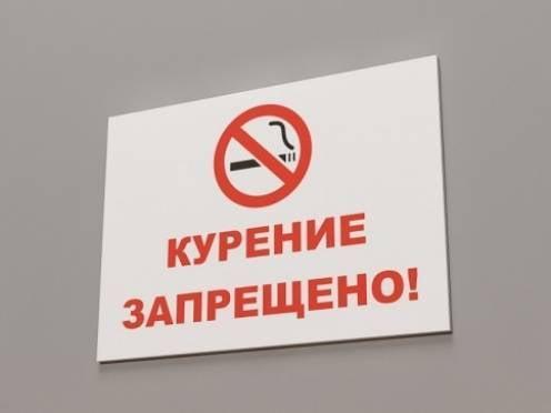 370 жителей Мордовии поплатятся за курение в общественных местах