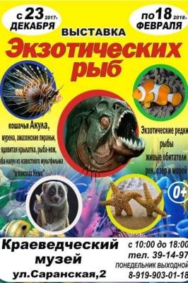 Экзотические рыбы