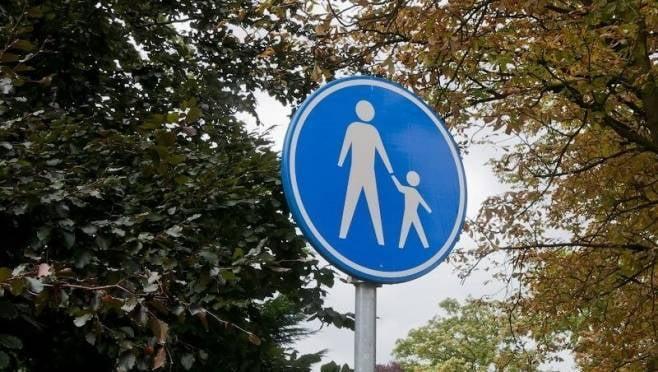 В июне некоторые улицы Саранска станут пешеходными