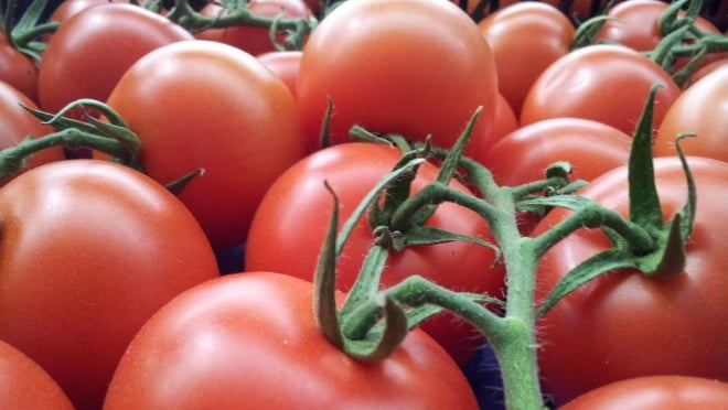 На ярмарке в Саранске продавали лжемордовские помидоры