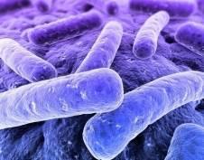 Студент-нигериец Эболу в Пензу не привёз