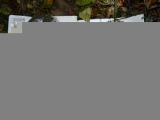 В Саранске 19-летнего наркосбытчика приговорили к 6 годам строгого режима