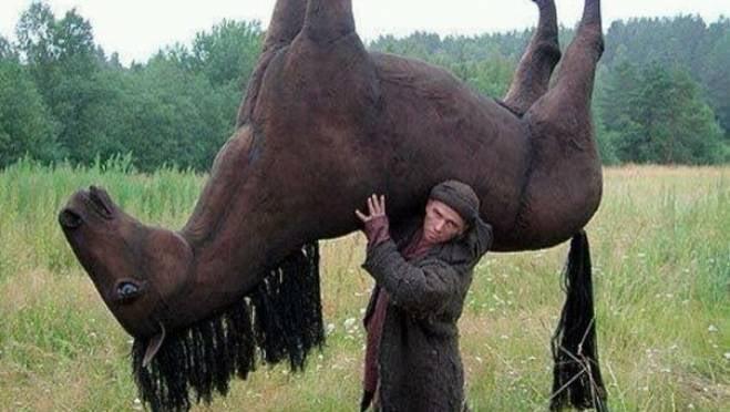 Мужчина цыганской народности увёл с фермы в Мордовии 3 лошадей
