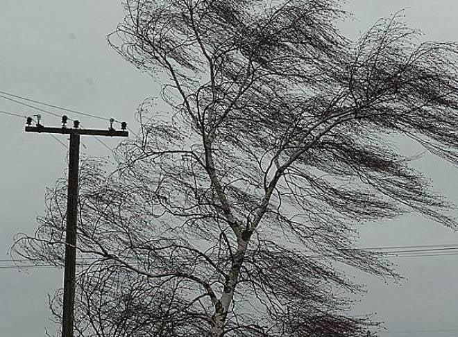 В четверг синоптики обещают сильный ветер в Мордовии