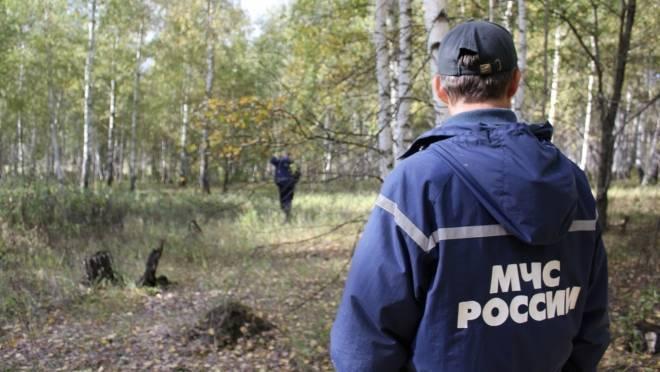 В Мордовии массово теряются грибники