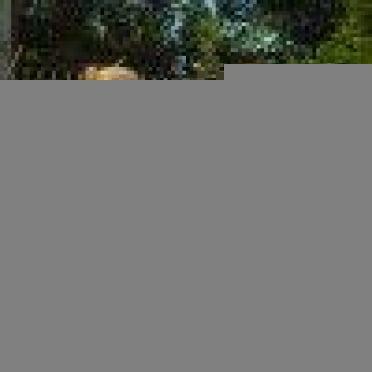 Проблемы агропрома и алкоголизма среди молодежи хотят решить сельские жители Мордовии при помощи Народной программы