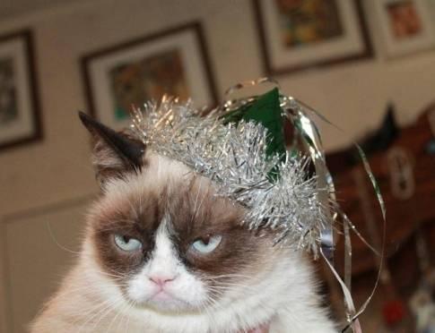Каждый четвёртый россиянин остался недоволен новогодними праздниками
