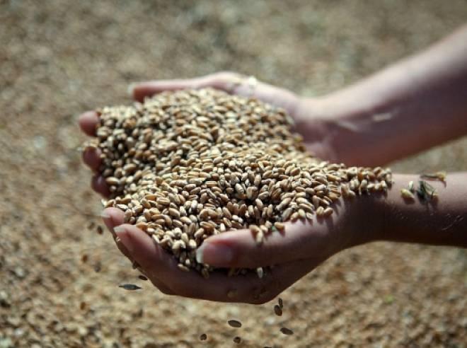 Аграрии Мордовии должны собрать 1 млн 250 тыс тонн зерна
