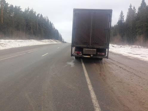 В России дальнобойщики протестуют и заявляют о возможном росте цен на продукты