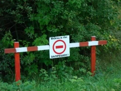 Въезд в леса Мордовии ограничат