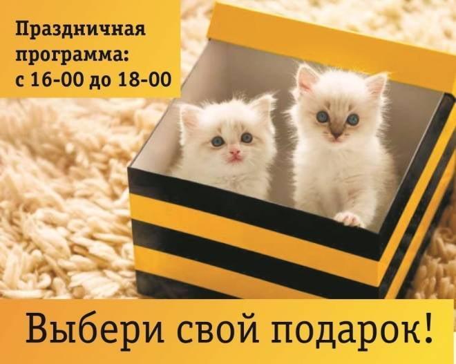 «Билайн» в Саранске открыл новый офис продаж и обслуживания