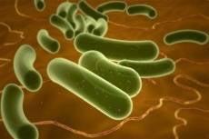В саранской школе 70 детей заразились кишечной инфекцией