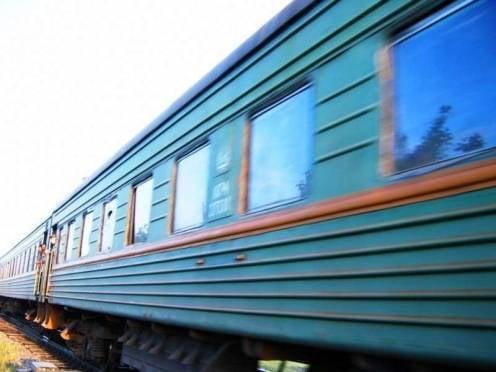 Почти кило гашиша нашли рузаевские полицейские у пассажира поезда
