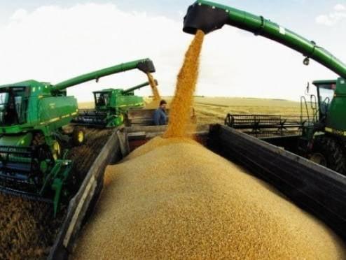 Мордовия увеличила объемы сельхозпроизводства