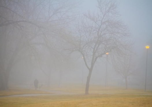 Мордовию может окутать туман