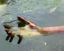 В речке Качерма обнаружили труп неизвестной женщины
